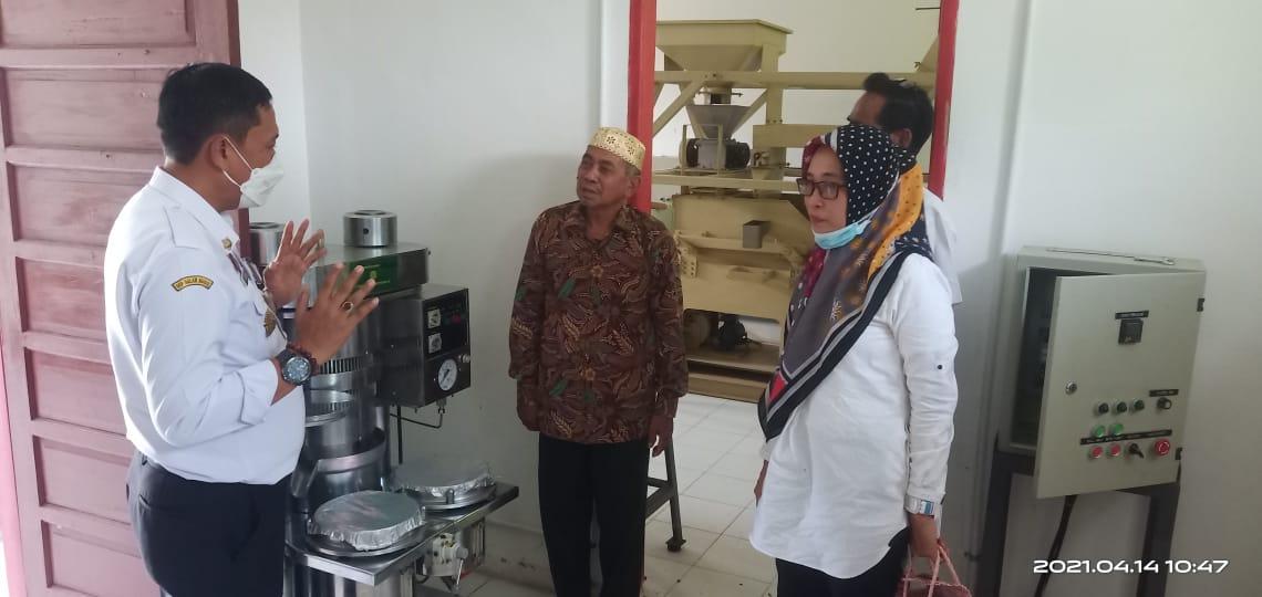 Berdayakan Petani Kakao, Kadis Pertanian Kabupaten Luwu Berharap Ekonomi Masyarakat Tumbuh Baik