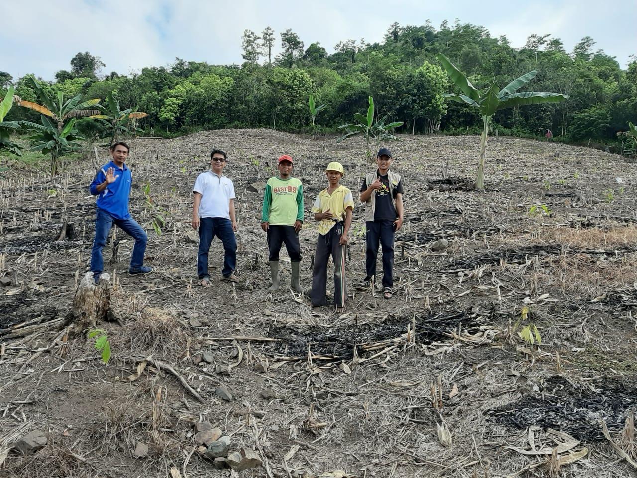 Tim READSI Luwu, Pantau Penanaman Kakao di Bupon dan Bua